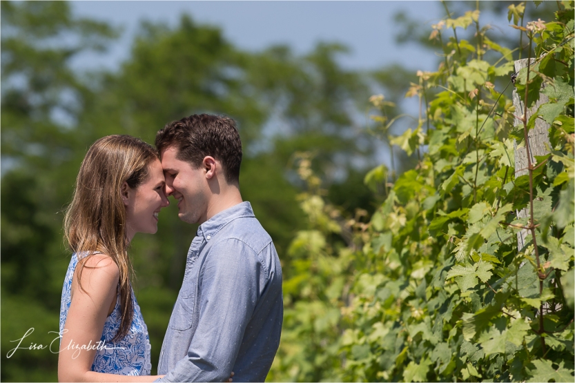 Cape Cod Wedding Photographer | © www.lisaelizabeth.com | Truro Vineyards